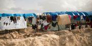 al-Hol-lägret i norra Syrien där barnen befann sig innan de fördes vidare till Irak. Arkivbild. Maya Alleruzzo / TT NYHETSBYRÅN/ NTB Scanpix