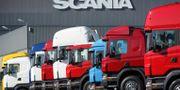 Illustration: Lastbilar parkerade utanför Scanias fabrik i Södertälje. Fredrik Sandberg / TT / TT NYHETSBYRÅN
