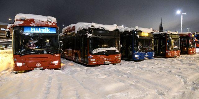 Stockholmsbussar. Johan Nilsson/TT / TT NYHETSBYRÅN