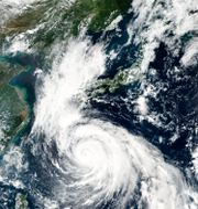Tyfonen Haishen TT NYHETSBYRÅN