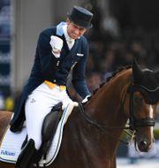 Patrik Kittel på hästen Well Done.  Pontus Lundahl/TT / TT NYHETSBYRÅN