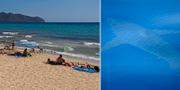 Arkivbild, vithaj, till vänster/strand på Mallorca. TT/Alnitak