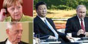 Angela Merkel, James Mattis, Xi Jinping och Vladimir Putin. TT