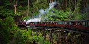 I Australien kan du göra en avstickare in i regnskogen med ångtåget Puffing Billy utanför Melbourne. Krishnakant Mahamuni/Pexels