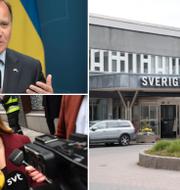Statsminister Stefan Löfven och KD-ledaren Ebba Busch är två av de partiledare som i kväll drabbar samman i debatten.  TT