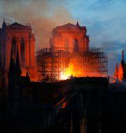 Notre Dame i lågor.  Michel Euler / TT NYHETSBYRÅN
