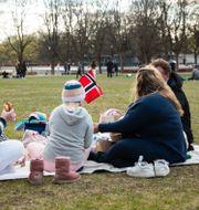 Människor i Frognerparken i Oslo. Berit Roald / TT NYHETSBYRÅN
