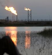Illustrationsbild. I bakgrunden oljefältet Nahr Bin Umar i Irak.  Essam Al Sudani / TT NYHETSBYRÅN