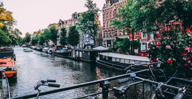 Nederländerna tar krafttag mot överturismen.  Liam Gant/Pexels