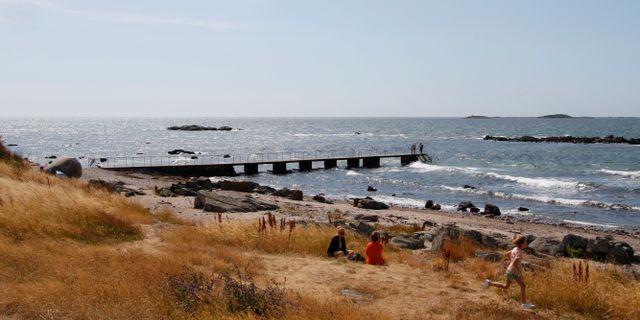 Torekov i Skåne.  Erik Johansen / TT NYHETSBYRÅN
