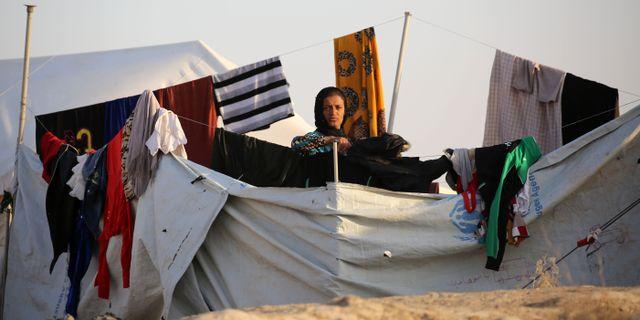Svenska foretag evakuerar i irak