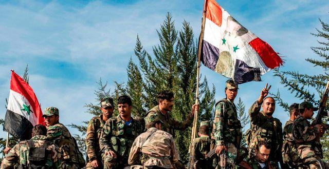 Regeringstrupper i Syrien  DELIL SOULEIMAN / AFP