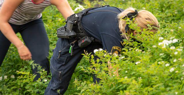 Polis letar efter försvunnen person.  Erland Segerstedt/TT / TT NYHETSBYRÅN