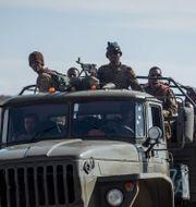 Regeringsstyrkor i Tigray i början av maj.  Ben Curtis / TT NYHETSBYRÅN