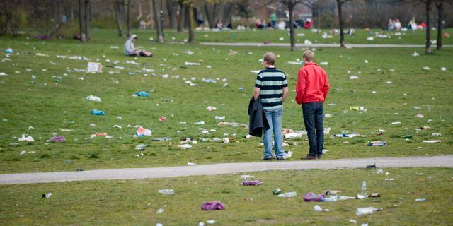 Såhär ska det inte längre se ut i Stockholms parker. HENRIK MONTGOMERY / TT / TT NYHETSBYRÅN