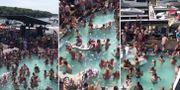 Bilder från poolpartyt spreds i sociala medier Twitter