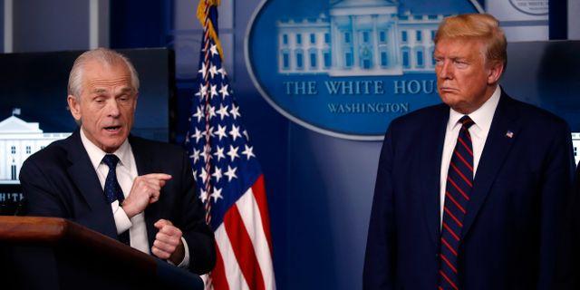 Navarro och Trump. Alex Brandon / TT NYHETSBYRÅN