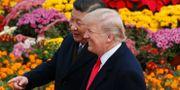 Arkivbild: Xi och Trump. Andy Wong / TT NYHETSBYRÅN/ NTB Scanpix