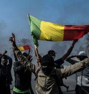 Demonstranter i Dakar. Sylvain Cherkaoui / TT NYHETSBYRÅN