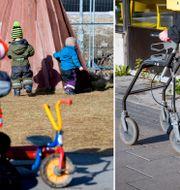 105-årige Rosa Lundgren har kallats till förskoleklass. Gorm Kallestad/TT& Helena Landstedt/TT