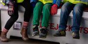 Barn på förskola. Arkivbild. Hasse Holmberg / TT / TT NYHETSBYRÅN