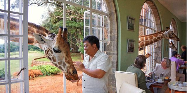 Giraffe Manor i Kenya liknar ingenting annat. The Safari Collection