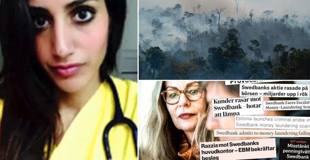 Karolin Hakim, bränder i Amazonas och Birgitte Bonnesen. TT/privat