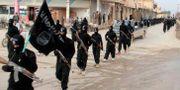IS-terrorister i Raqqa i Syrien. Uncredited / TT NYHETSBYRÅN/ NTB Scanpix