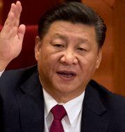Xi Jinping. Ng Han Guan / TT NYHETSBYRÅN