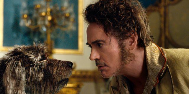 Robert Downey Jr spelar doktor John Dolittle. TT NYHETSBYRÅN