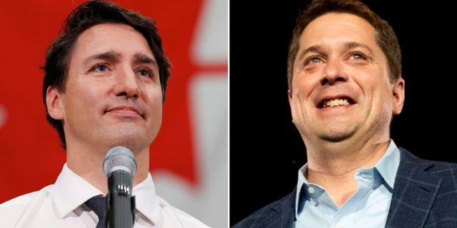 Justin Trudeau och Andrew Scheer. TT