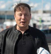 Arkivbild: Elon Musk.  Christophe Gateau / TT NYHETSBYRÅN