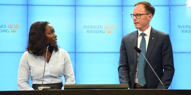 Liberalernas ekonomisk-politiske talesperson Mats Persson till höger.  Henrik Montgomery/TT / TT NYHETSBYRÅN