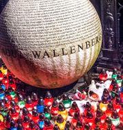 Minnesstund på Raoul Wallenbergs torg i Stockholm i samband med Förintelsens minnesdag. Tomas Oneborg / SvD / TT / TT NYHETSBYRÅN