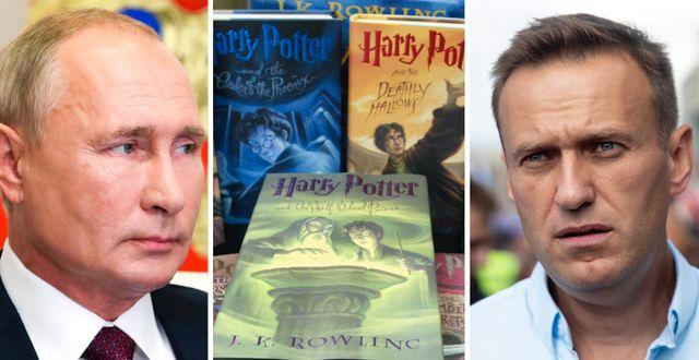 Vladimir Putin. Harry Potter-böcker. Aleksej Navalnyj . TT
