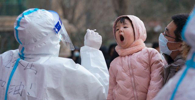 Ett barn testas för covid-19 i Hebeiprovinsen. Mu Yu / TT NYHETSBYRÅN