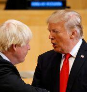 Boris Johnson och Donald Trump. Kevin Lamarque / TT NYHETSBYRÅN