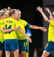 Sverige firar segern.  JON OLAV NESVOLD / BILDBYRÅN