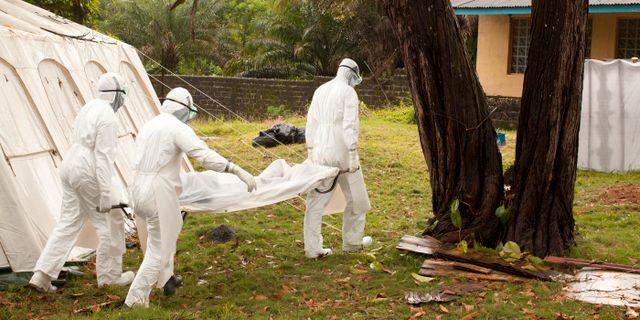 Svenskar jobbar i ebolasmittade omradet