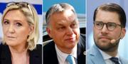 Le Pen, Orbán och Åkesson. TT