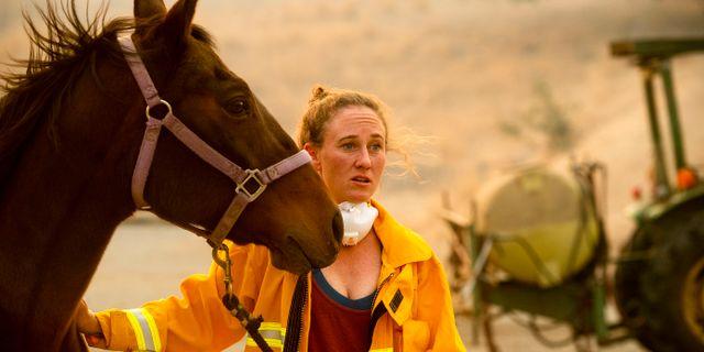 Veterinären Emily Putt arbetar med att rädda hästar från bränder. Noah Berger / TT NYHETSBYRÅN