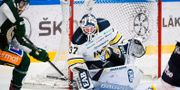 Jonas Gunnarsson i HV71:s mål. FREDRIK KARLSSON / BILDBYRÅN