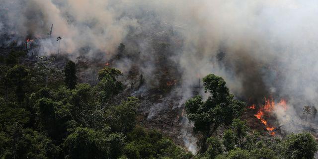 Bild från Novo Progresso i Amazonas idag. NACHO DOCE / TT NYHETSBYRÅN