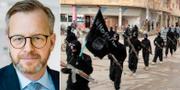 Mikael Damberg (S). IS-terrorister i staden Raqqa under 2014. TT