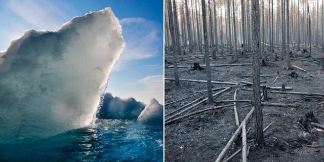 Klimatfrågan är nu väljarnas viktigaste fråga, enligt en Demoskopmätning. TT
