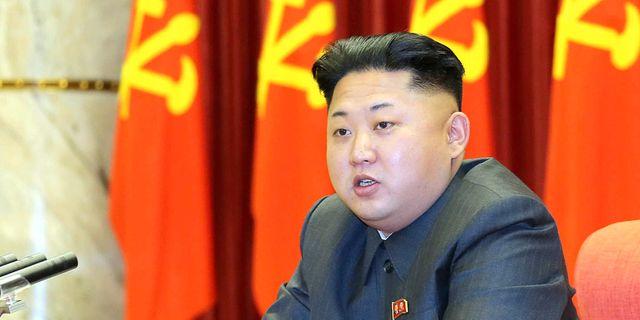 Nordkoreansk dronare over palats