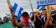 Demonstranter.  DIANA ULLOA / AFP
