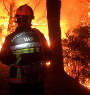 Skogsbränderna har rasat i dagar. TT NYHETSBYRÅN