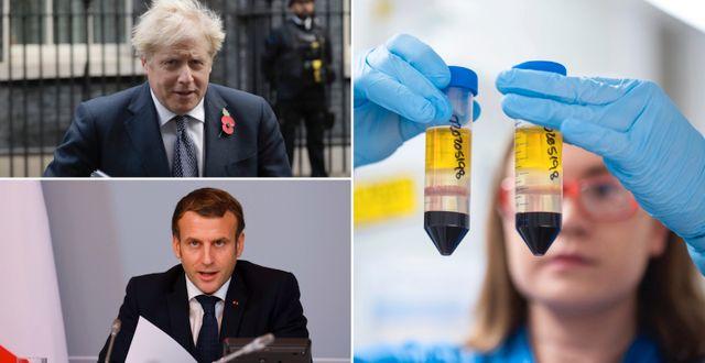 Boris Johnson/Emmanuel Macron/Vaccinforskning. TT
