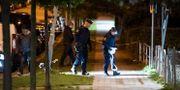 Polisen söker med hund och spärrar av på Ramels väg på Rosengård i Malmö efter en skottlossning i samband med ett grovt rån. Johan Nilsson/TT / TT NYHETSBYRÅN